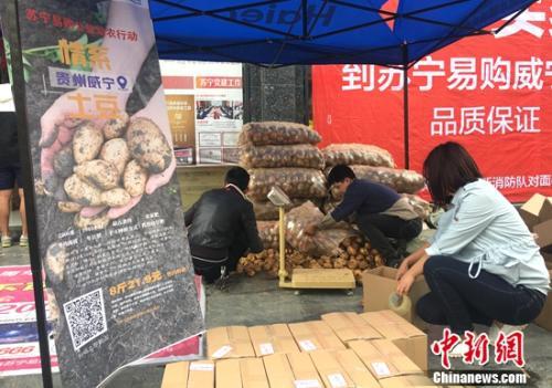 探访苏宁电商扶贫实训店:挖掘电商潜力 实现就业扶贫
