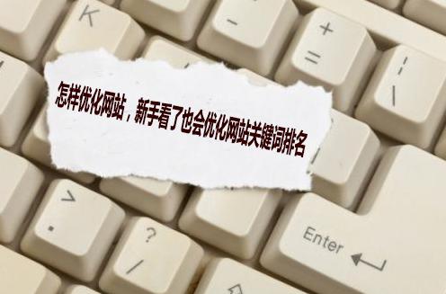 网站seo排名,新手看了也会优化网站关键词排名